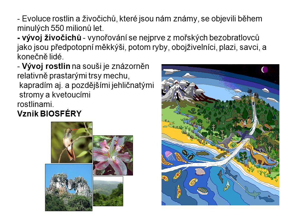 - Evoluce rostlin a živočichů, které jsou nám známy, se objevili během minulých 550 milionů let.