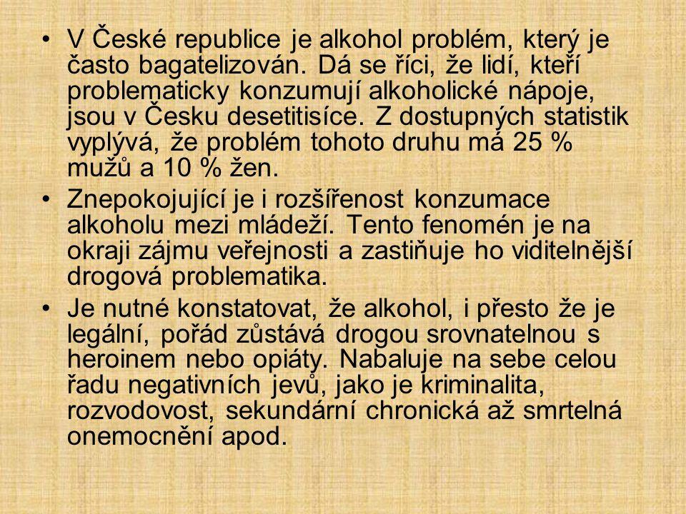 V České republice je alkohol problém, který je často bagatelizován