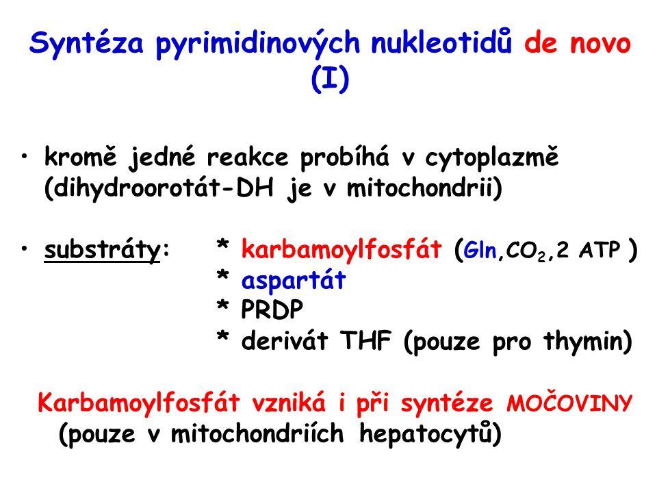 Syntéza pyrimidinových nukleotidů de novo (I)