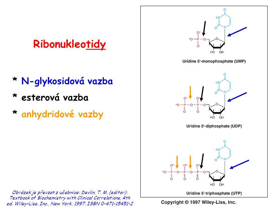 Ribonukleotidy * N-glykosidová vazba * esterová vazba