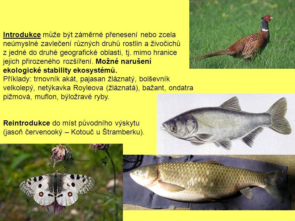 Introdukce může být záměrné přenesení nebo zcela neúmyslné zavlečení různých druhů rostlin a živočichů z jedné do druhé geografické oblasti, tj. mimo hranice jejich přirozeného rozšíření. Možné narušení ekologické stability ekosystémů.