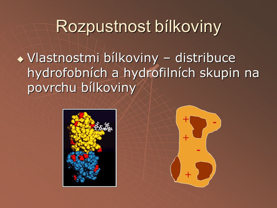 Rozpustnost bílkoviny