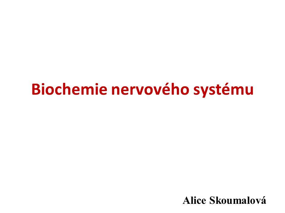 Biochemie nervového systému