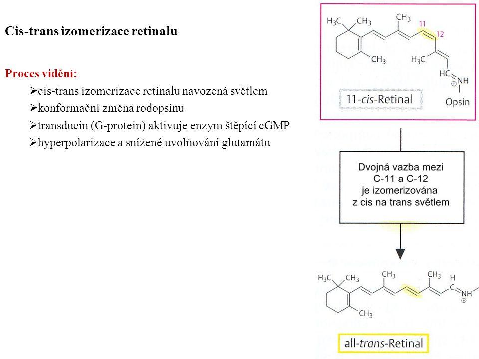 Cis-trans izomerizace retinalu