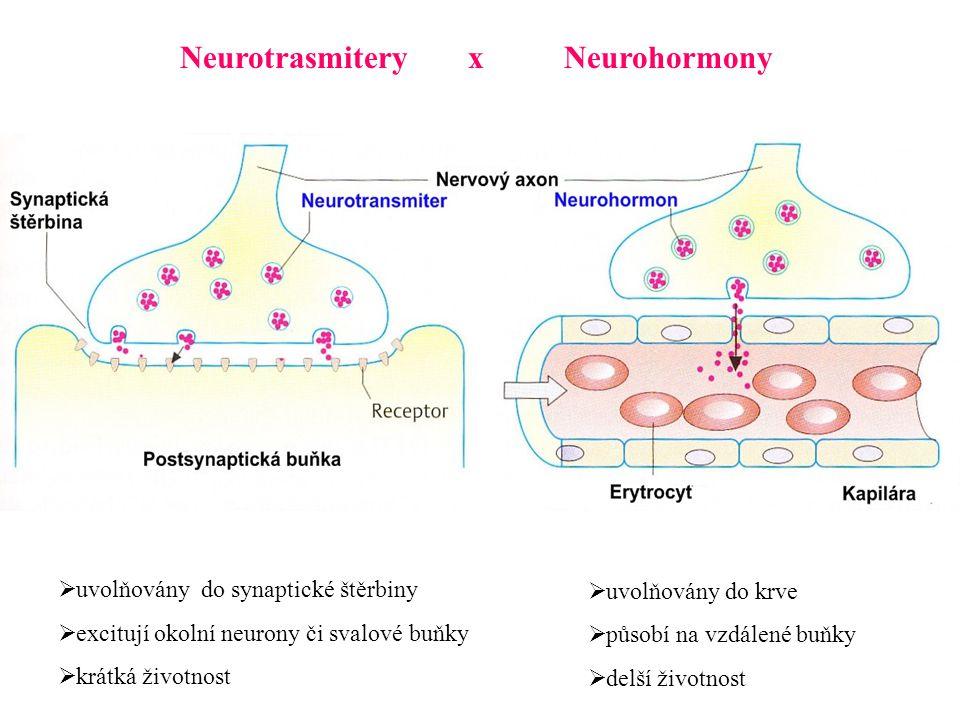 Neurotrasmitery x Neurohormony