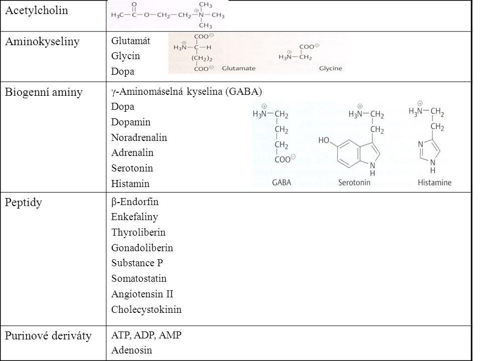 Acetylcholin Aminokyseliny Biogenní aminy Peptidy Purinové deriváty