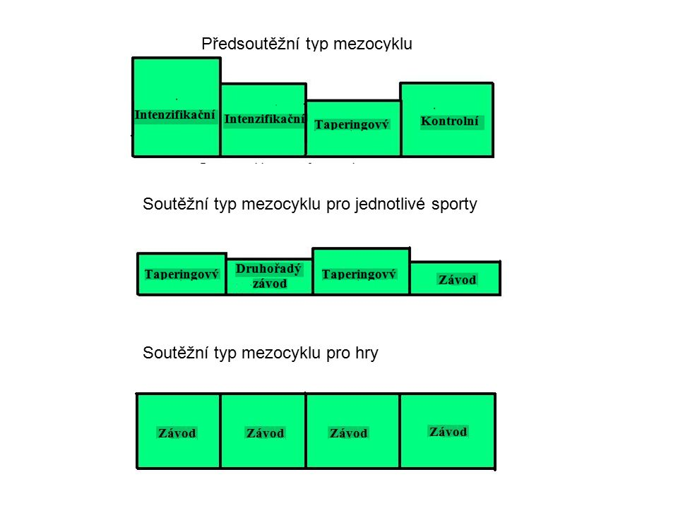 Předsoutěžní typ mezocyklu