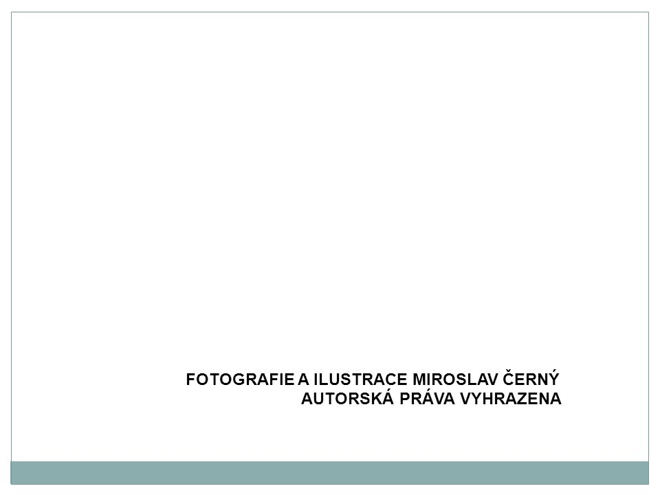 Fotografie a ilustrace Miroslav Černý