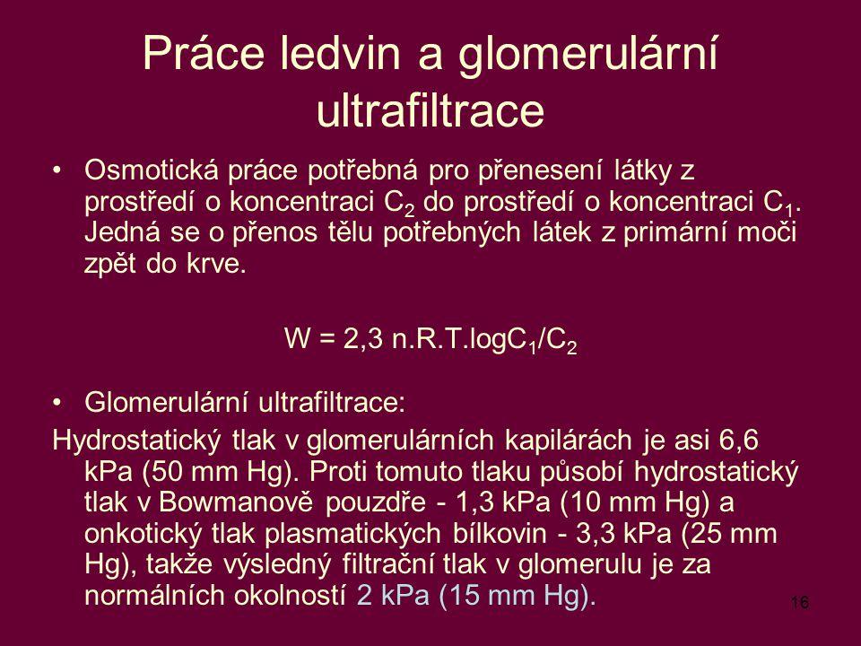 Práce ledvin a glomerulární ultrafiltrace