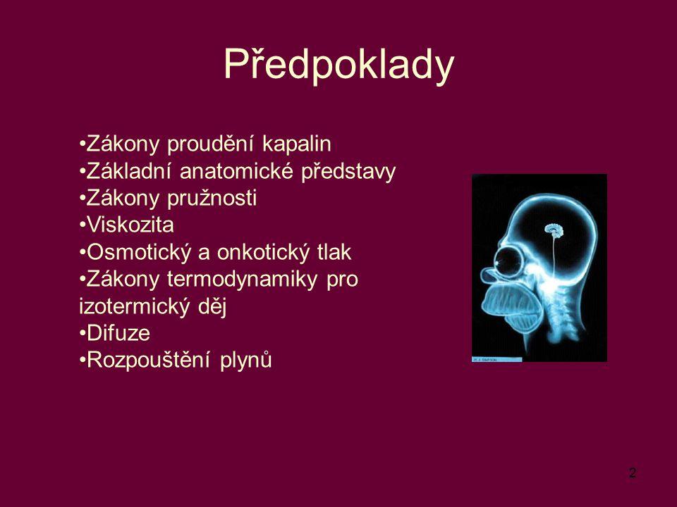 Předpoklady Zákony proudění kapalin Základní anatomické představy