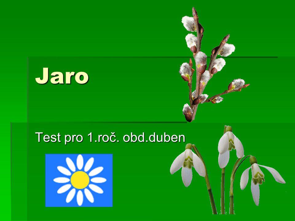 Jaro Test pro 1.roč. obd.duben