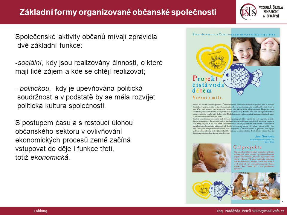Základní formy organizované občanské společnosti