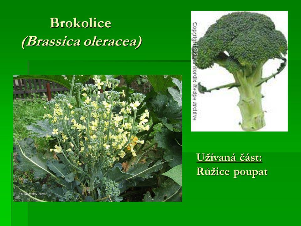 Brokolice (Brassica oleracea)