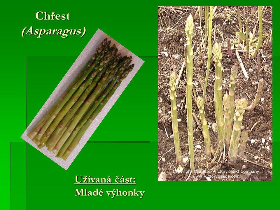 Chřest (Asparagus) Užívaná část: Mladé výhonky