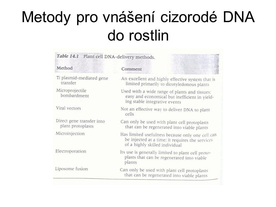 Metody pro vnášení cizorodé DNA do rostlin