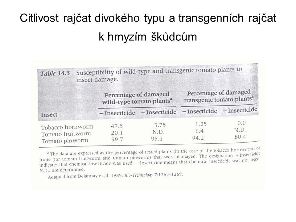 Citlivost rajčat divokého typu a transgenních rajčat k hmyzím škůdcům