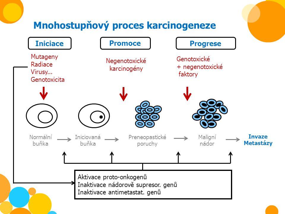 Mnohostupňový proces karcinogeneze