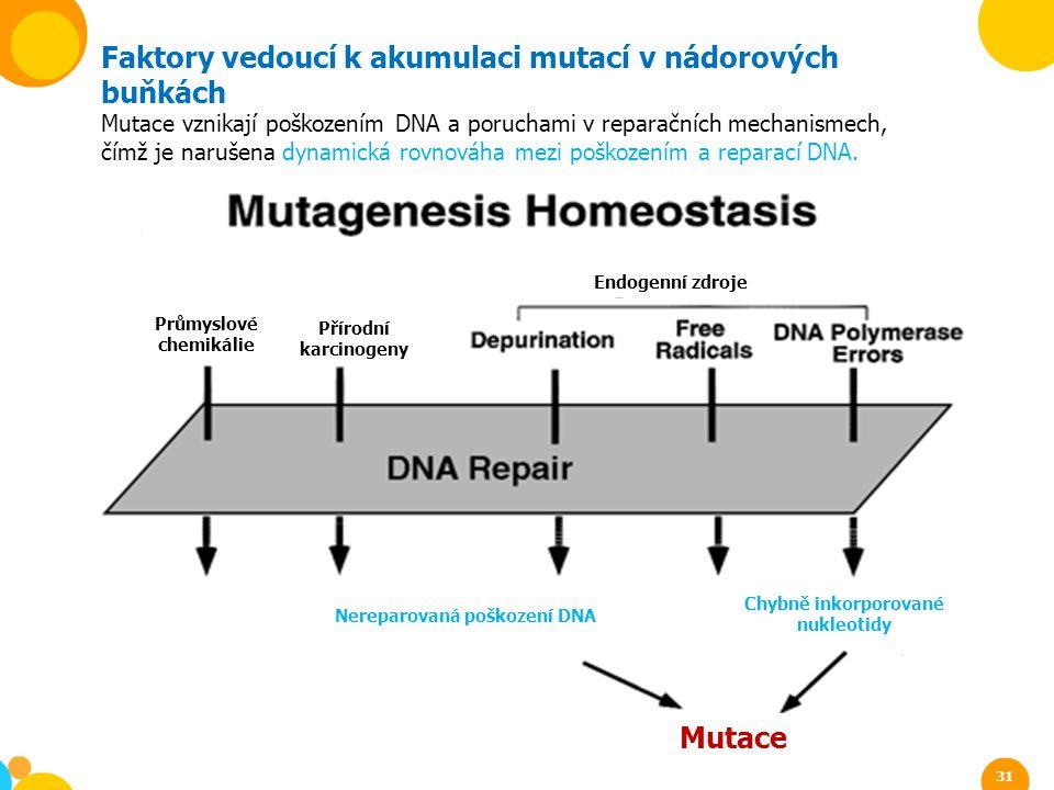 Faktory vedoucí k akumulaci mutací v nádorových buňkách