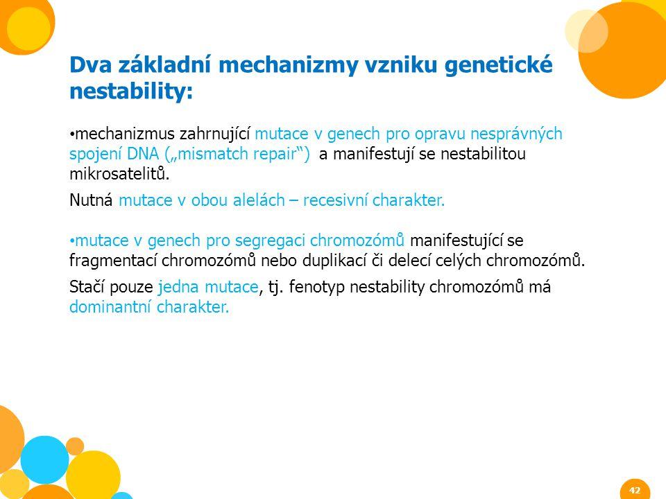Dva základní mechanizmy vzniku genetické nestability: