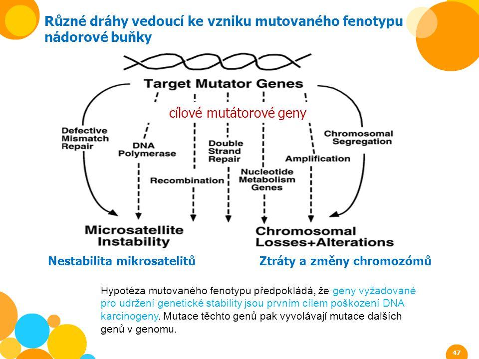 cílové mutátorové geny