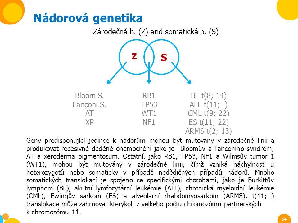 Nádorová genetika S Z Zárodečná b. (Z) and somatická b. (S)