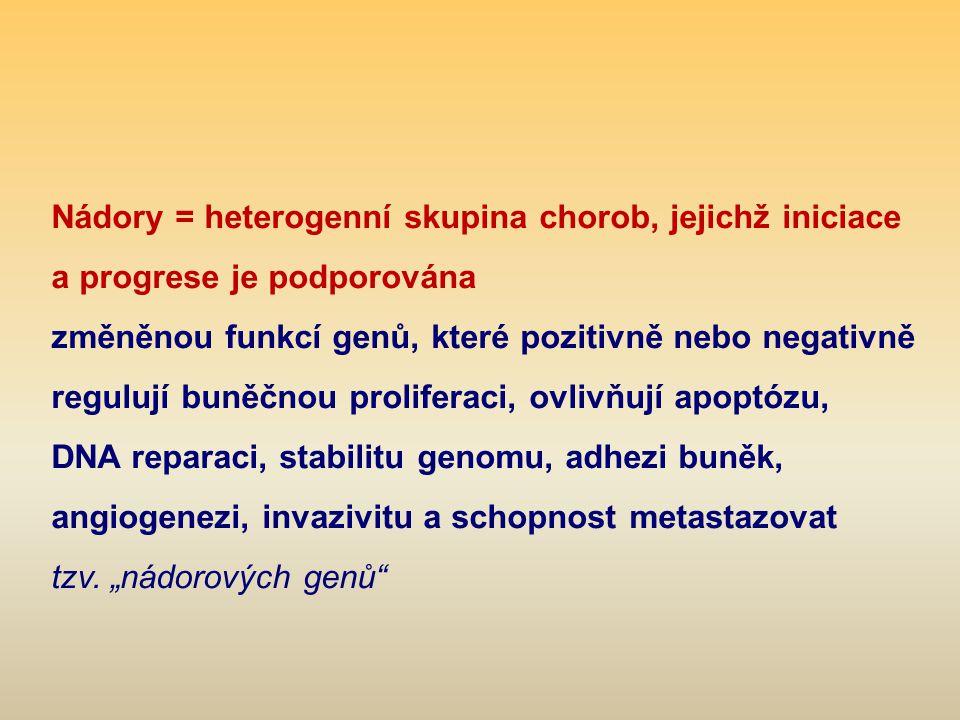 Nádory = heterogenní skupina chorob, jejichž iniciace a progrese je podporována