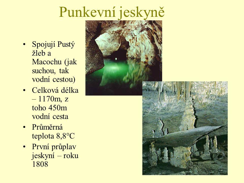 Punkevní jeskyně Spojují Pustý žleb a Macochu (jak suchou, tak vodní cestou) Celková délka – 1170m, z toho 450m vodní cesta.