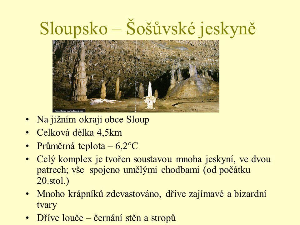 Sloupsko – Šošůvské jeskyně