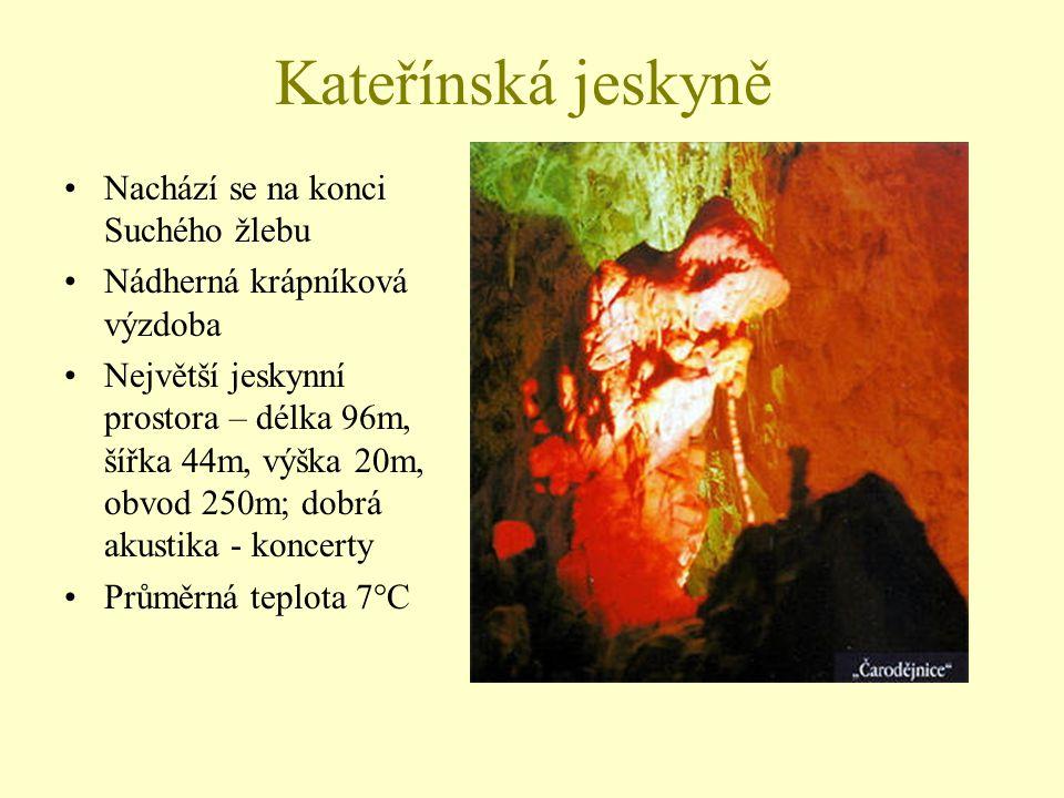 Kateřínská jeskyně Nachází se na konci Suchého žlebu
