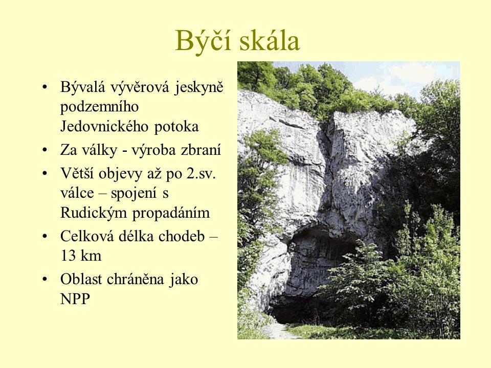 Býčí skála Bývalá vývěrová jeskyně podzemního Jedovnického potoka