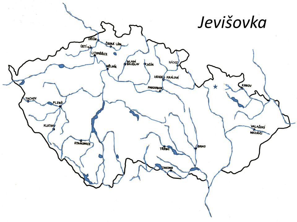 Jevišovka