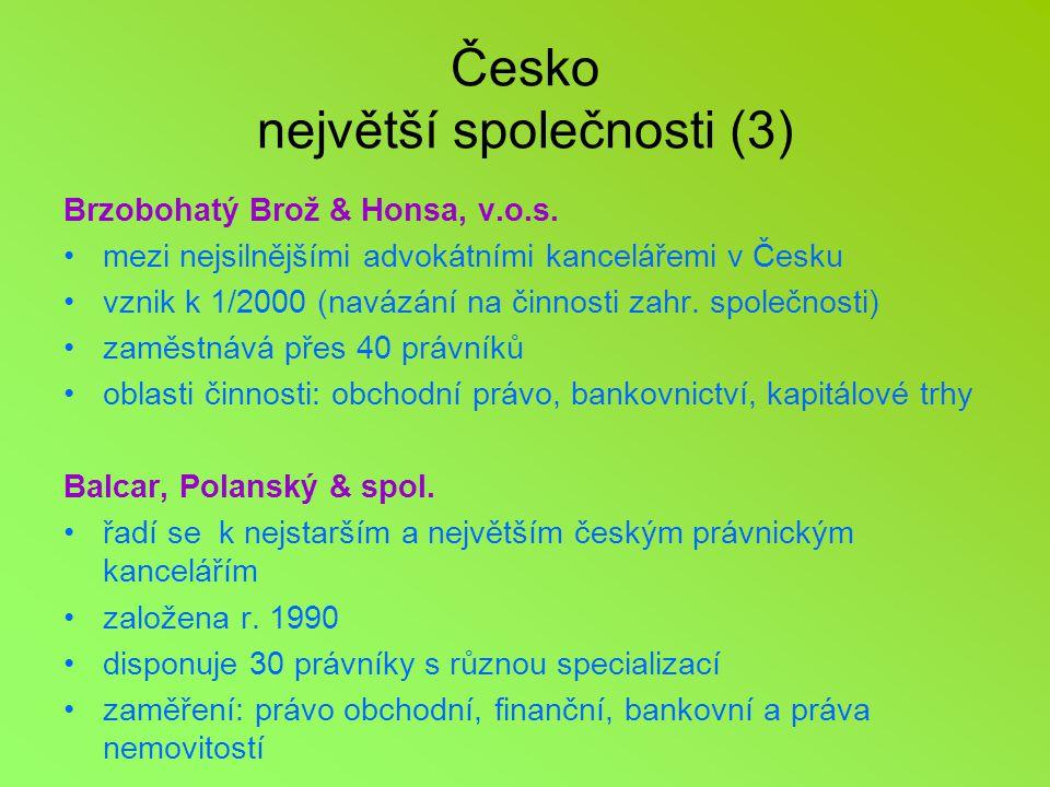 Česko největší společnosti (3)