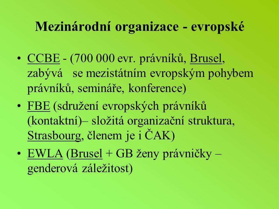 Mezinárodní organizace - evropské