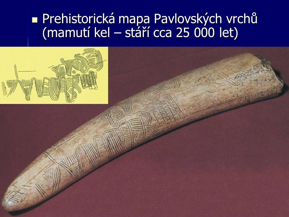 Prehistorická mapa Pavlovských vrchů (mamutí kel – stáří cca 25 000 let)