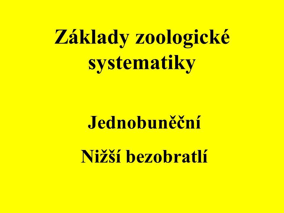 Základy zoologické systematiky