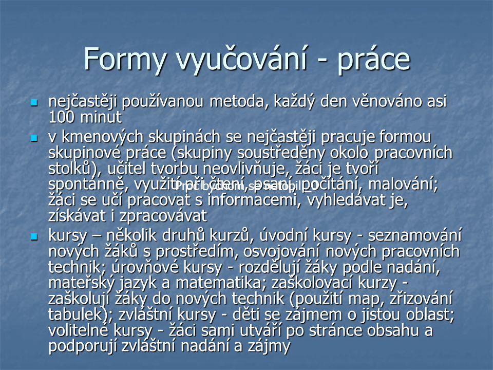 Formy vyučování - práce