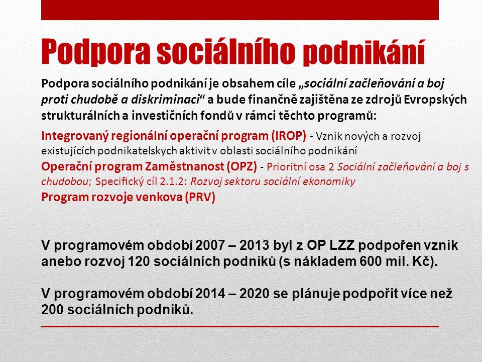 Podpora sociálního podnikání