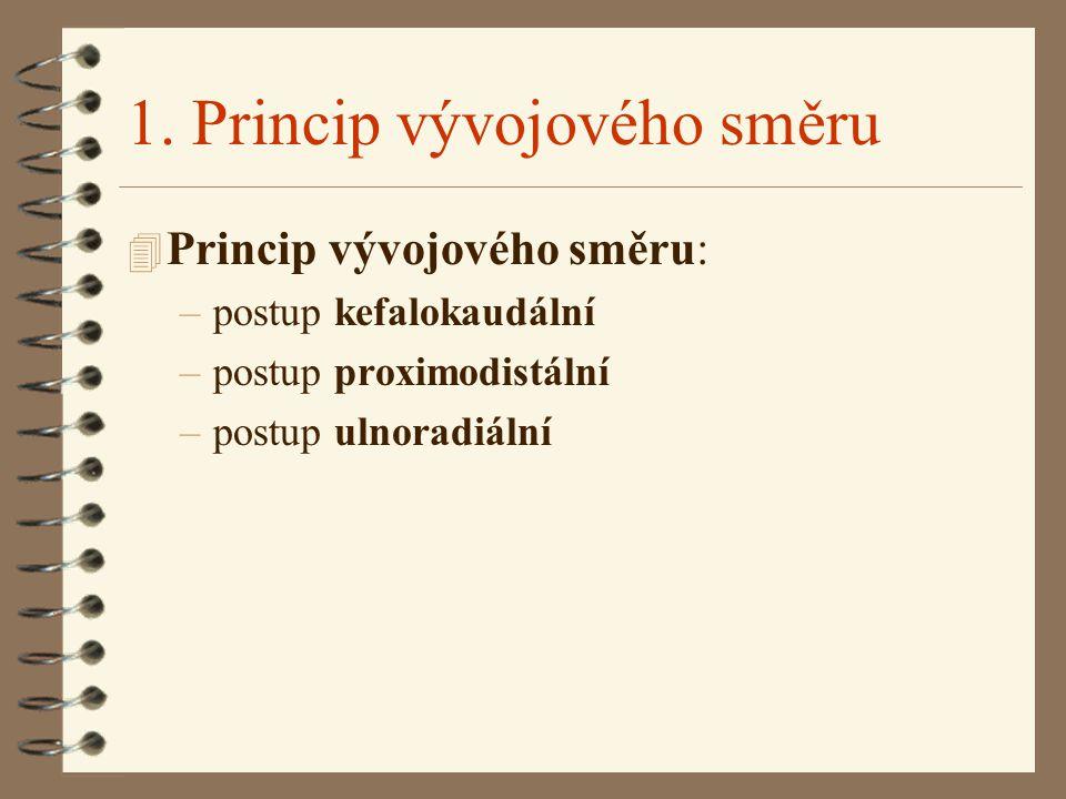 1. Princip vývojového směru
