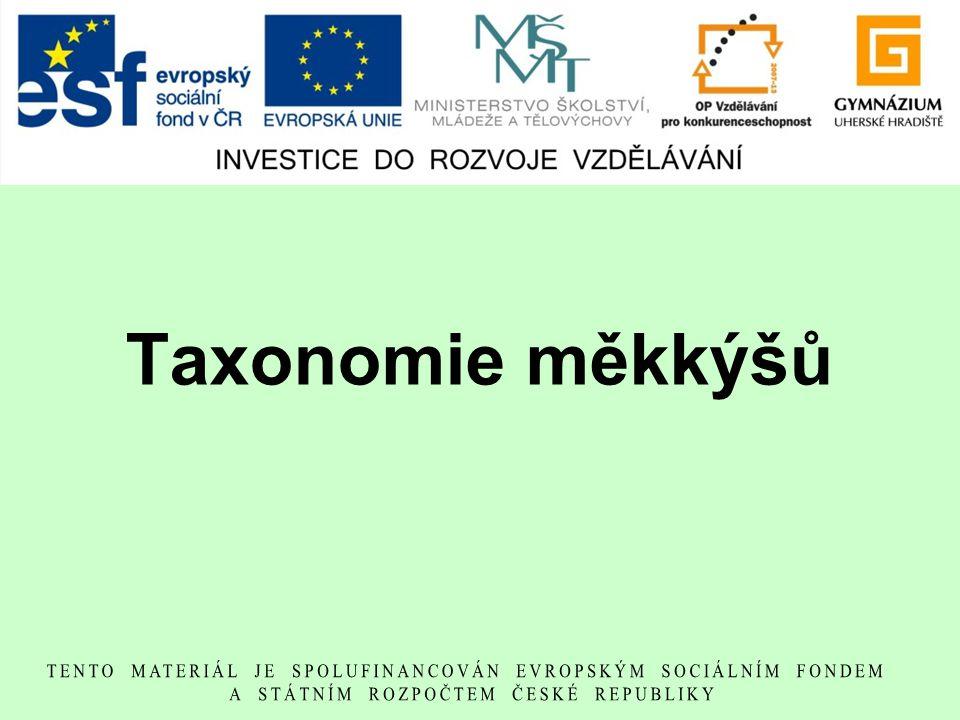 Taxonomie měkkýšů