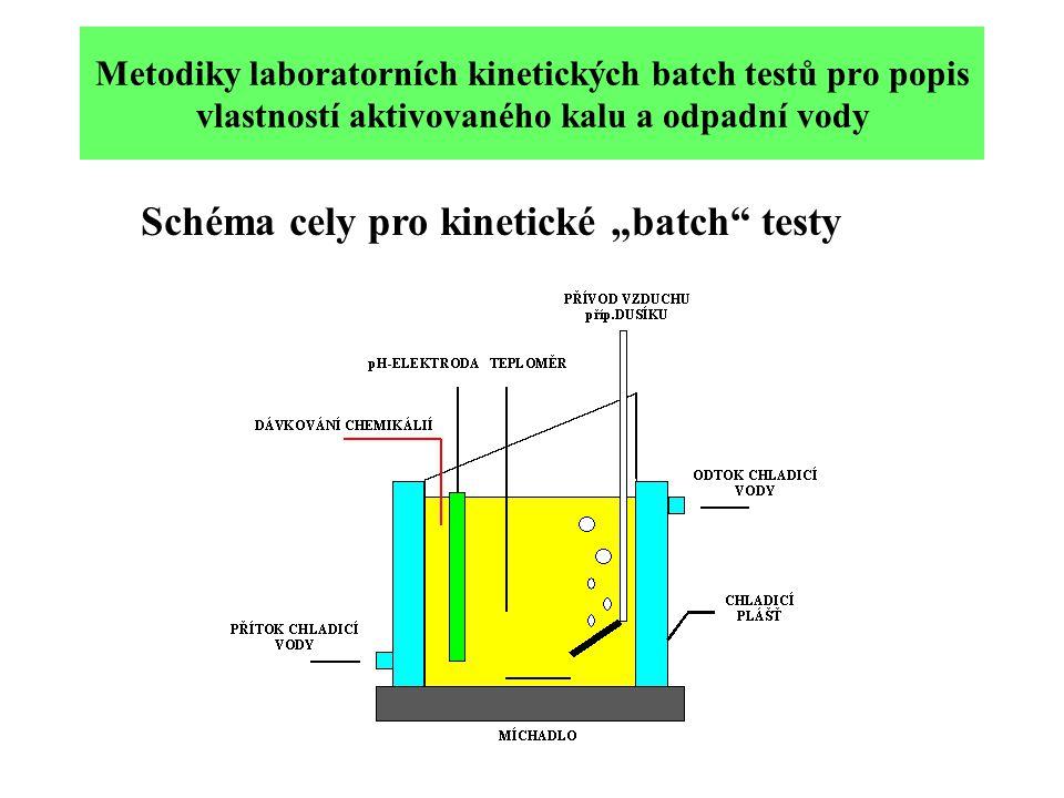 """Schéma cely pro kinetické """"batch testy"""