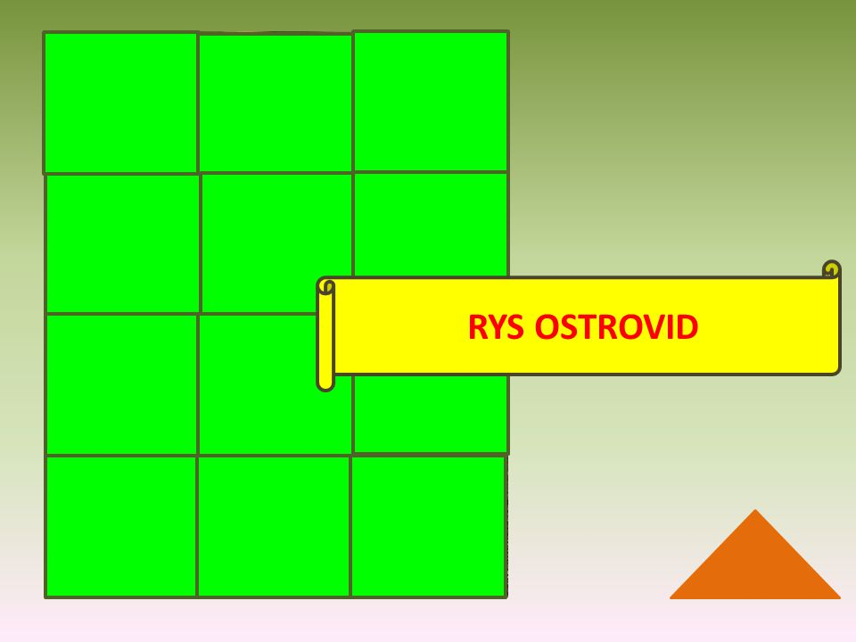 RYS OSTROVID