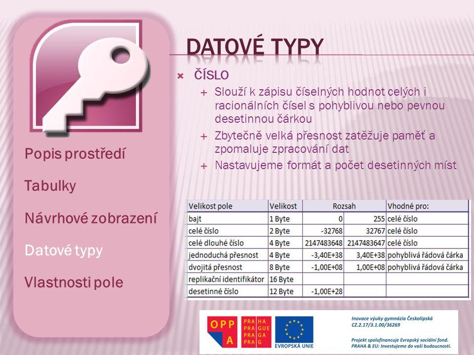 Datové typy Popis prostředí Tabulky Návrhové zobrazení Datové typy