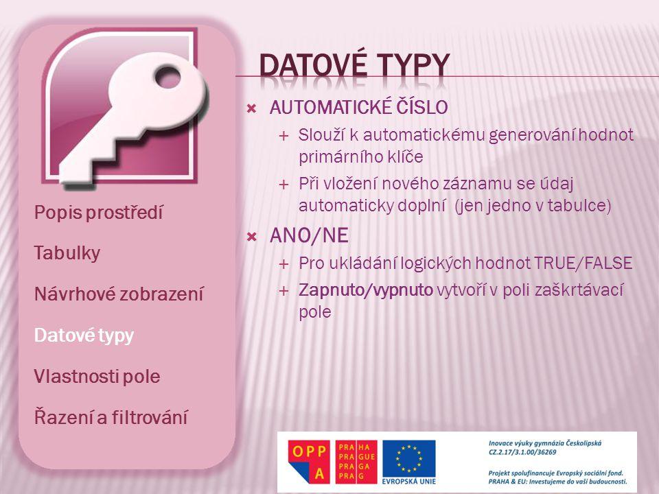 Datové typy ANO/NE AUTOMATICKÉ ČÍSLO Popis prostředí Tabulky