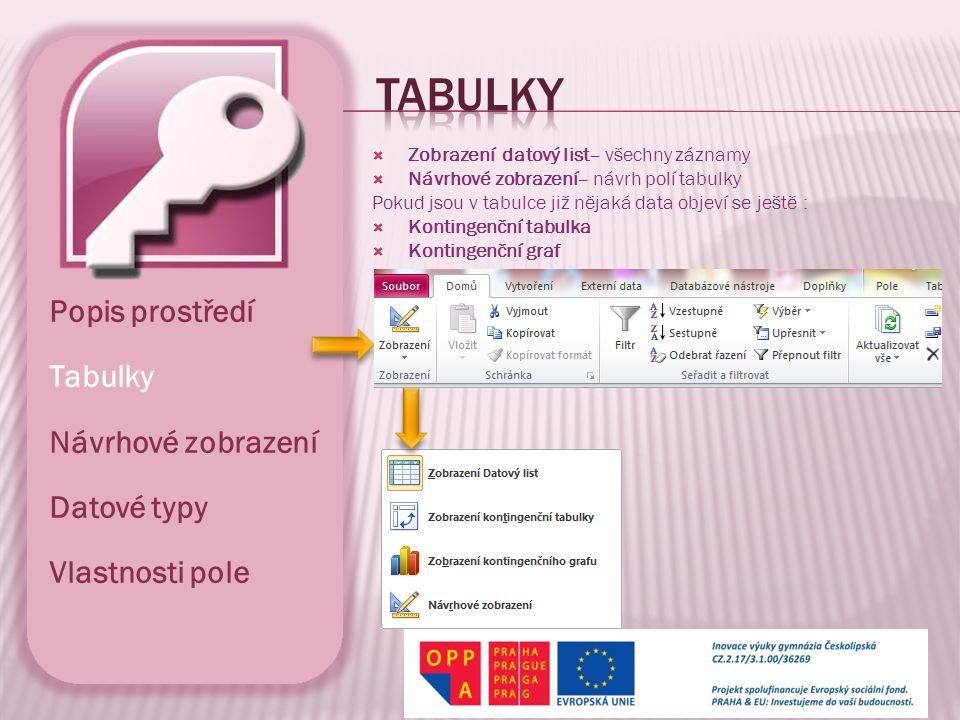 Tabulky Popis prostředí Tabulky Návrhové zobrazení Datové typy