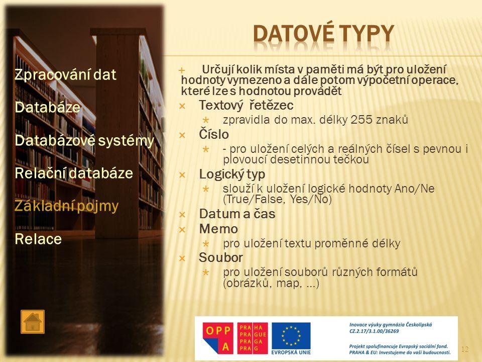 Datové typy Zpracování dat Databáze Databázové systémy