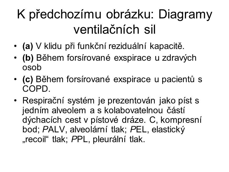K předchozímu obrázku: Diagramy ventilačních sil