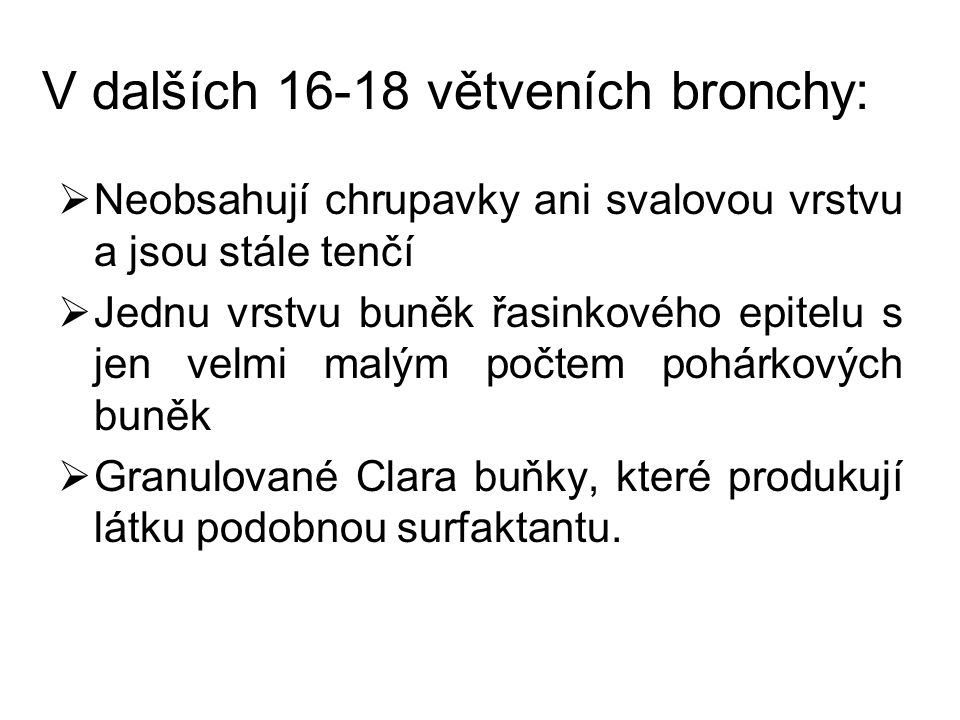 V dalších 16-18 větveních bronchy: