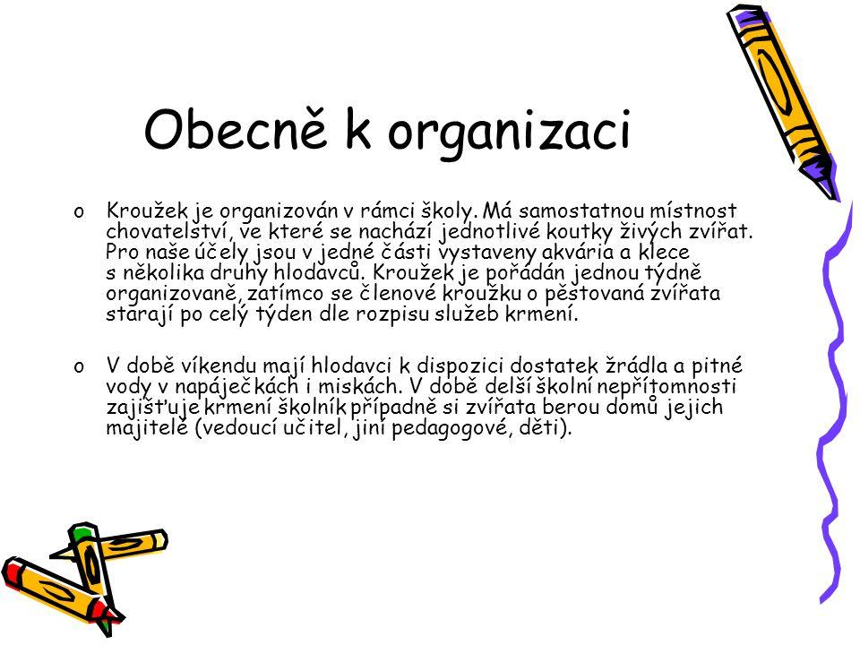 Obecně k organizaci