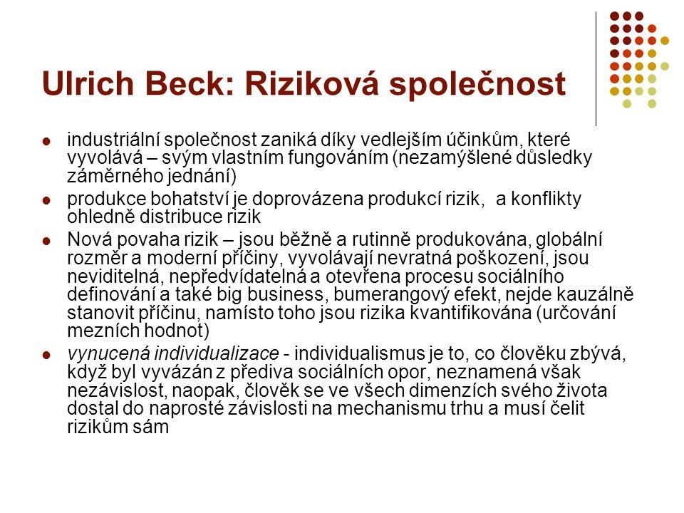 Ulrich Beck: Riziková společnost