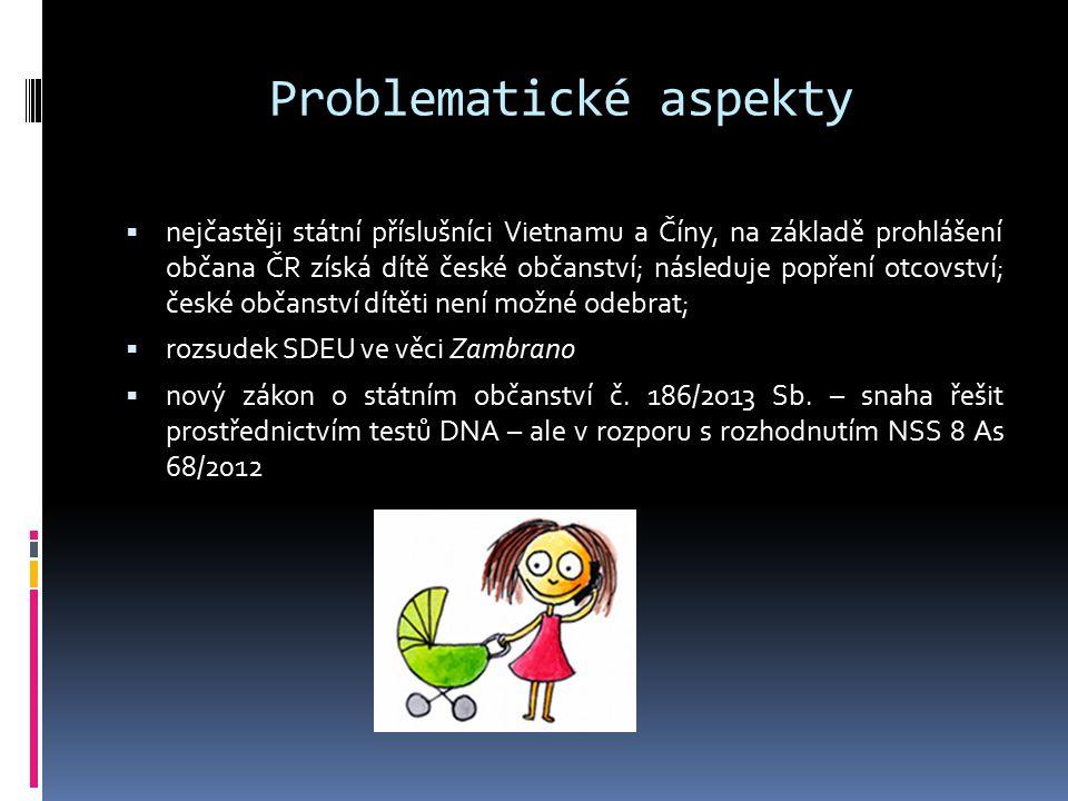 Problematické aspekty